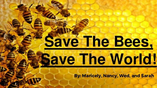 save-the-bees-1-638